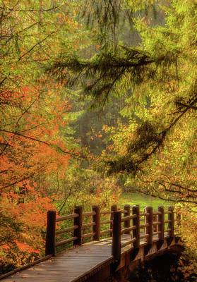 Photograph - Autumn Bliss by Don Schwartz