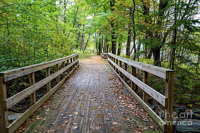 Photograph - Autumn Bridge by Susan Rydberg