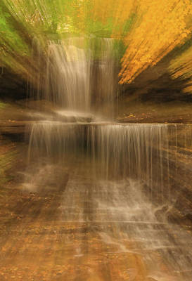 Photograph - Autumn Burst by Dan Sproul