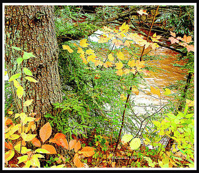 Photograph - Autumn By A Pennsylvania Mountain Stream Digital Art by A Gurmankin