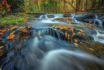 Photograph - Autumn Cascade In Vaughan Woods by Rick Berk