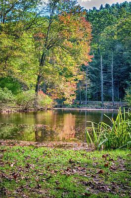 Photograph - Autumn Color by Dan Urban