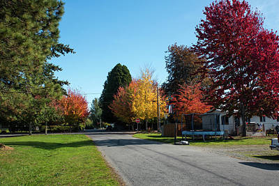 Photograph - Autumn Color On Alder Street by Tom Cochran