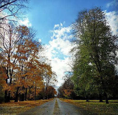 Photograph - Autumn Conquers by Cyryn Fyrcyd