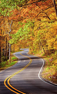 Photograph - Autumn Country Road by Jill Love