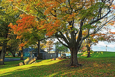 Photograph - Autumn Day In The Salem Willows Salem Ma Red by Toby McGuire