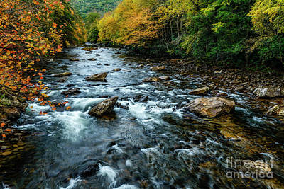 Photograph - Autumn Day On Cranberry River by Thomas R Fletcher