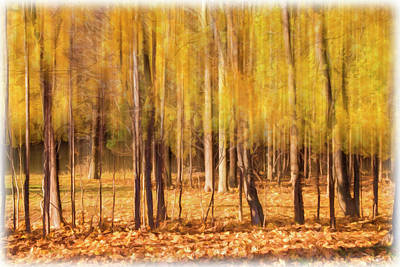 Photograph - Autumn Dreaming by Cathy Kovarik