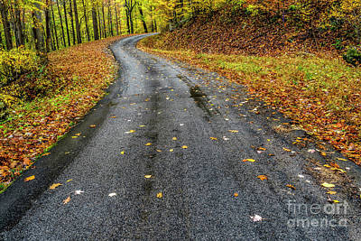 Photograph - Autumn Drive Country Road by Thomas R Fletcher