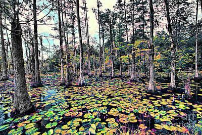 Photograph - Autumn Fall Color Lily Pads by Dan Carmichael