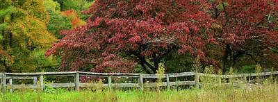 Photograph - Autumn Fenceline by SL Ernst