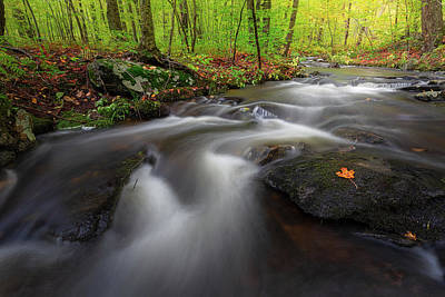 Photograph - Autumn Flow by Bill Wakeley