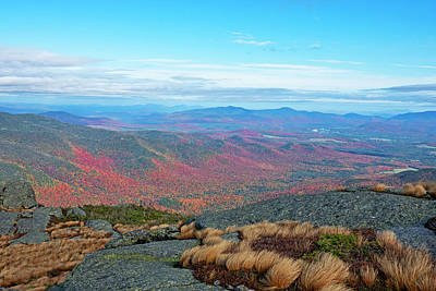 Photograph - Autumn Foliage Upstate Ny New York From Wright Mountain Adirondacks Vegitation by Toby McGuire