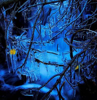 Photograph - Autumn Freeze by Sean Sarsfield