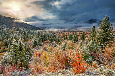 Photograph - Autumn Grandeur by Leland D Howard