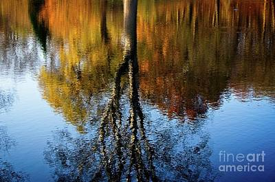 Photograph - Autumn Impression by Elzbieta Fazel