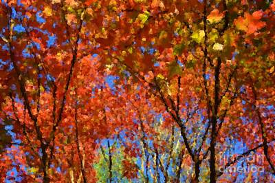 Photograph - Autumn Impressions by Robyn King
