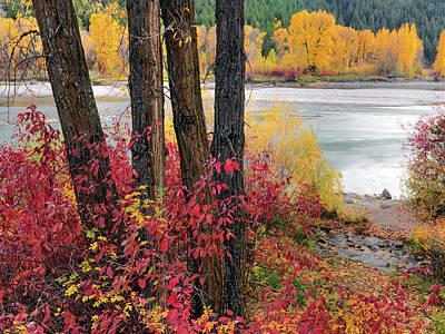 Photograph - Autumn In East Idaho by Leland D Howard
