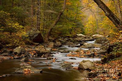 Photograph - Autumn In Ken Lockwood Gorge by Debra Fedchin