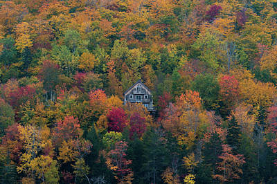 Photograph - Autumn In Maine by Jesse MacDonald