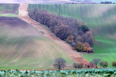 Photograph - Autumn In Moravia 4 by Dubi Roman
