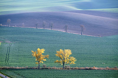 Photograph - Autumn In Moravia 7 by Dubi Roman