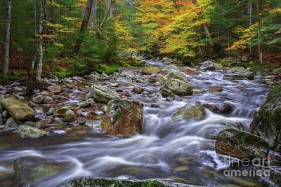 Photograph - Autumn In Nh by Sharon Seaward