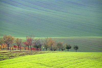 Autumn In South Moravia 18 Art Print