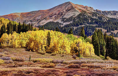 Photograph - Autumn In The Rockies by Jean Hutchison