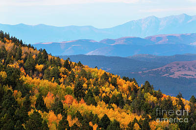 Photograph - Autumn In The Sangre De Cristo by Steve Krull