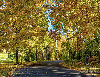 Photograph - Autumn In Woodbury  by Nick Zelinsky