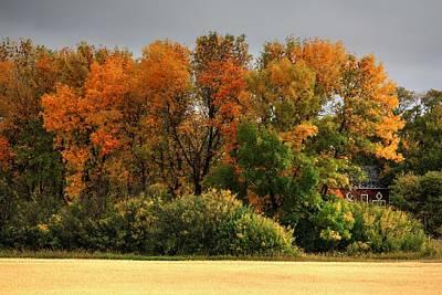 Photograph - Autumn Is Nigh  by David Matthews