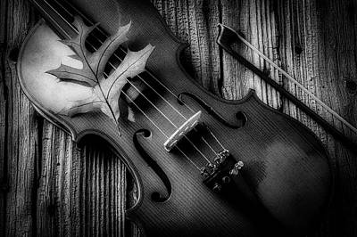 Photograph - Autumn Leaf On Violin Black And White by Garry Gay