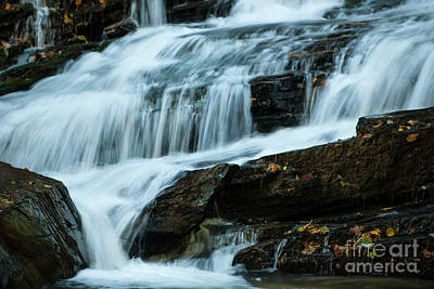 Photograph - Autumn Leaves Water Fall by Dale Powell