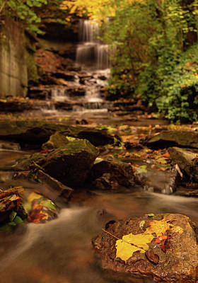 Photograph - Autumn Leaves West Milton Waterfall by Dan Sproul