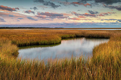 Photograph - Autumn Marsh by Michael Blanchette