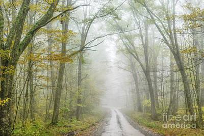 Photograph - Autumn Mist Monongahela National Forest by Thomas R Fletcher
