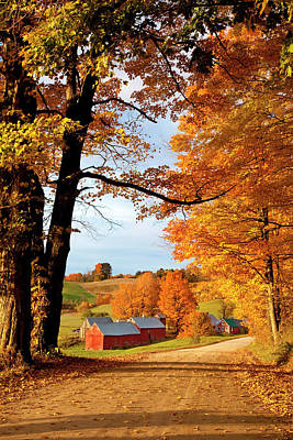 Photograph - Autumn Morning At Jenne Farm, Reading by Danita Delimont