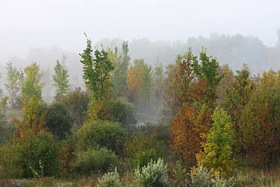 Photograph - Autumn Morning Fog by Tatiana Travelways