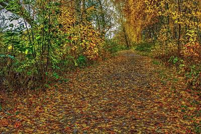 Mick Jagger - Autumn on path #j2 by Leif Sohlman
