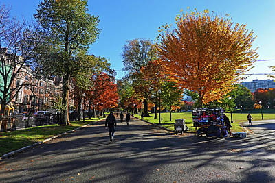 Photograph - Autumn On The Boston Common Boston Ma Fall Foliagr by Toby McGuire