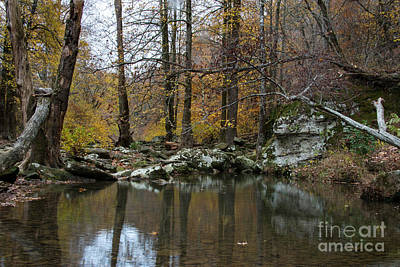 Photograph - Autumn On The Kings River by Joe Sparks