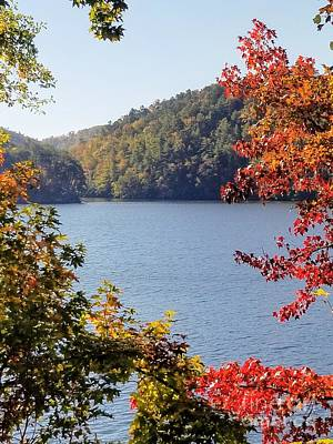 Photograph - Autumn On The Lake by Rachel Hannah