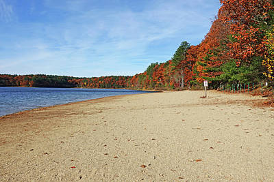 Photograph - Autumn On Walden Pond Concord Ma by Toby McGuire