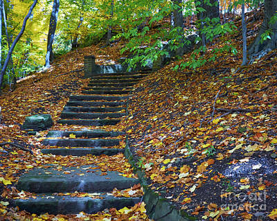 Photograph - Autumn Path by Steve Ondrus