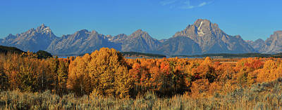 Photograph - Autumn Peak Beneath The Teton Peaks by Greg Norrell