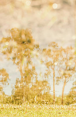 Photograph - Autumn Puddles by Jorgo Photography - Wall Art Gallery