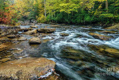 Photograph - Autumn Rain On Cranberry River by Thomas R Fletcher