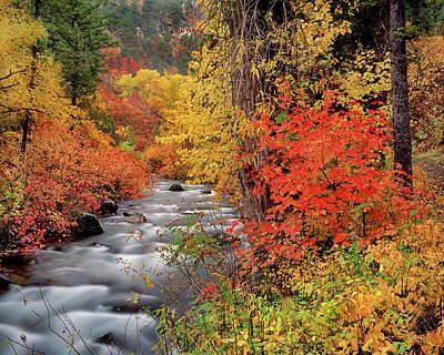 Photograph - Autumn Rapids by Leland D Howard