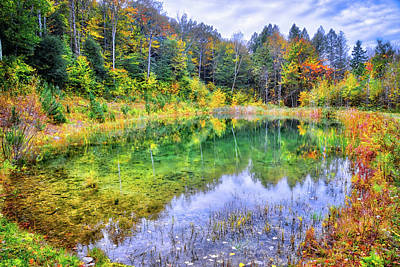 Photograph - Autumn Reflections At The Pond II by Lynn Bauer